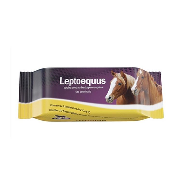Leptoequus