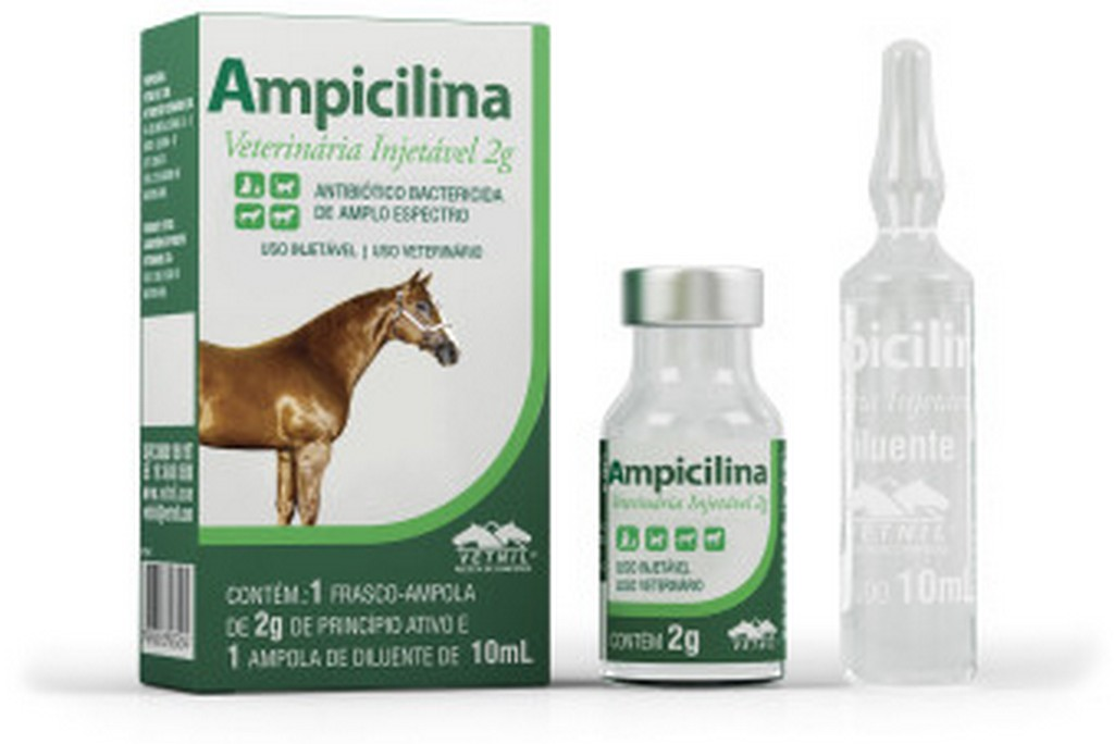 Ampicilina Veterinária Equinos 2G