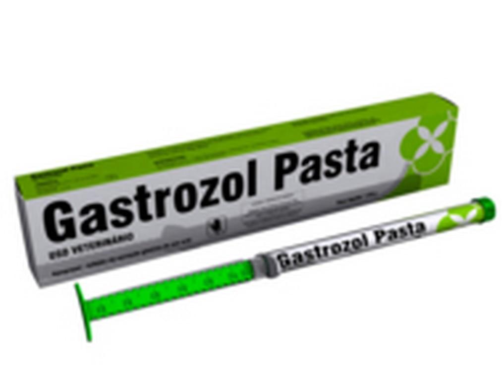 Gastrozol Pasta
