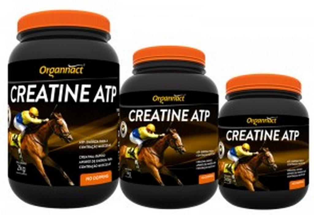Creatine ATP (500G, 1KG e 2KG)
