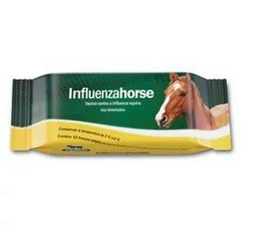Influenza Horse